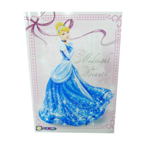 Notebook Disney Princess (1 box 160 books)